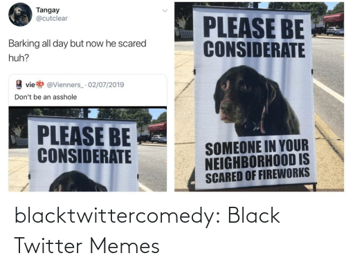 Black: Tangay  @cutclear  PLEASE BE  CONSIDERATE  Barking all day but now he scared  huh?  vie  @Vienners_· 02/07/2019  Don't be an asshole  PLEASE BE  CONSIDERATE  SOMEONE IN YOUR  NEIGHBORHOOD IS  SCARED OF FIREWORKS blacktwittercomedy:  Black Twitter Memes