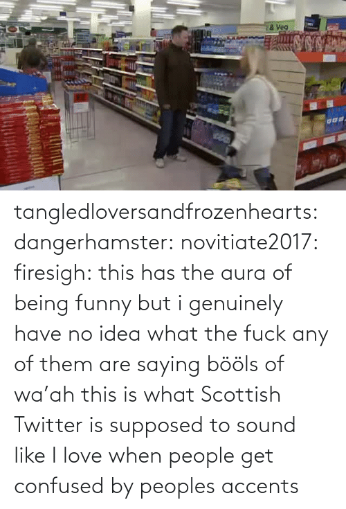 Twitter: tangledloversandfrozenhearts: dangerhamster:  novitiate2017:  firesigh:  this has the aura of being funny but i genuinely have no idea what the fuck any of them are saying  bööls of wa'ah  this is what Scottish Twitter is supposed to sound like  I love when people get confused by peoples accents