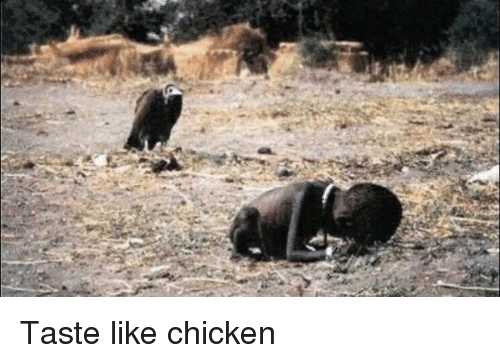 Funny, Chicken, and Like