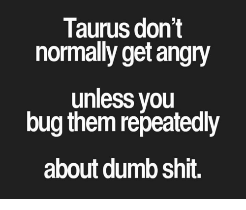 bugging: Taurus don't  normally get angry  unless you  bug them repeatedly  about dumb shit.