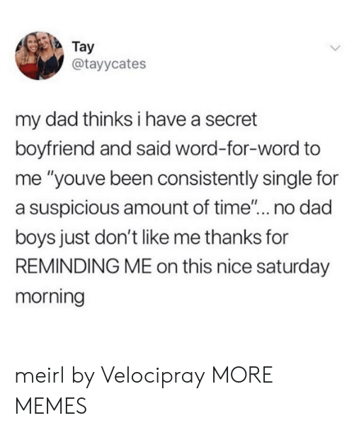 """Suspicious: Tay  @tayycates  my dad thinks i have a secret  boyfriend and said word-for-word to  me """"youve been consistently single for  a suspicious amount of time... no dad  boys just don't like me thanks for  REMINDING ME on this nice saturday  morning meirl by Velocipray MORE MEMES"""