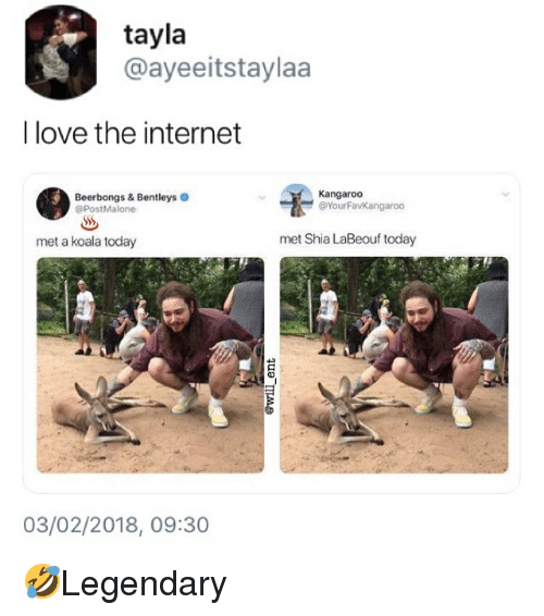 Internet, Love, and Memes: tayla  @ayeeitstaylaa  I love the internet  Kangaroo  Beerbongs & Bentleys  @PostMalone  ー@YourFaVKangaroo  met a koala today  met Shia LaBeouf today  03/02/2018, 09:30 🤣Legendary