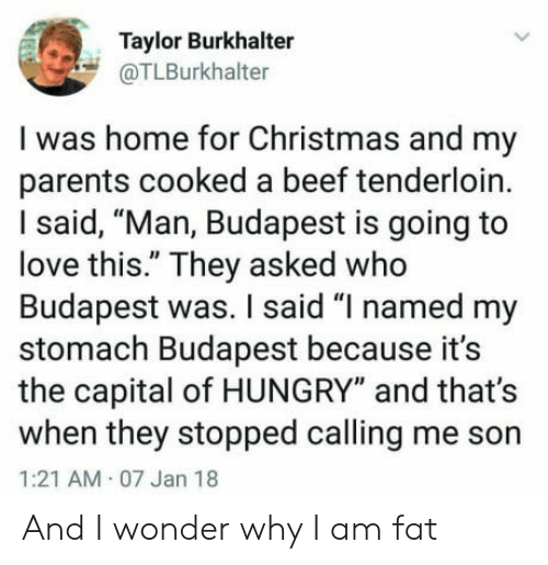 "Beef, Christmas, and Hungry: Taylor Burkhalter  @TLBurkhalter  I was home for Christmas and my  parents cooked a beef tenderloin.  I said, ""Man, Budapest is going to  love this."" They asked who  Budapest was. I said ""I named my  stomach Budapest because it's  the capital of HUNGRY"" and that's  when they stopped calling me son  1:21 AM 07 Jan 18  And I wonder why I am fat"