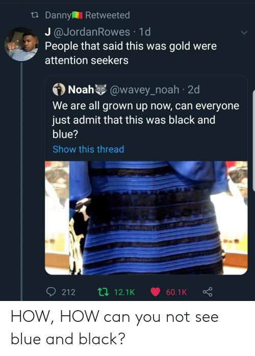 We Are All: tDanny Retweeted  J @JordanRowes 1d  People that said this was gold were  attention seekers  Noah @wavey_noah 2d  We are all grown up now, can everyone  just admit that this was black and  blue?  Show this thread  Li 12.1K  212  60.1K HOW, HOW can you not see blue and black?