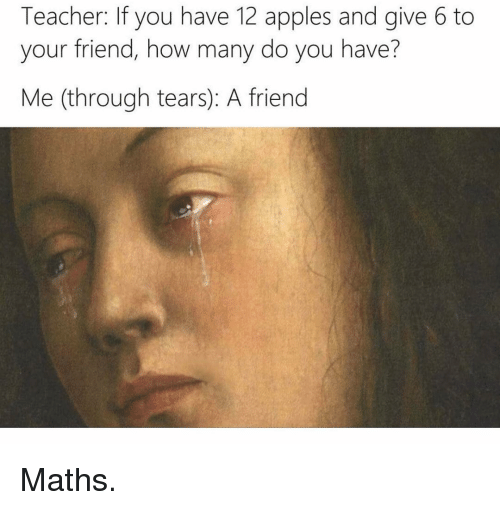 Appl: Teacher: If you have 12 apples and give 6 to  your friend, how many do you have?  Me (through tears A friend Maths.