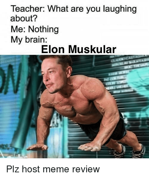 Meme, Teacher, and Brain: Teacher: What are you laughing  about?  Me: Nothing  My brain:  Elon Muskular Plz host meme review