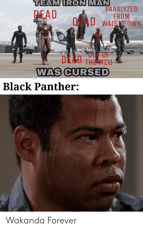 Wakanda: TEAM IRON MAN  PARALYZED  FROM  DAU WAISDOWN  PEAD  DEAU THE MCU  WAS CURSED  Black Panther: Wakanda Forever