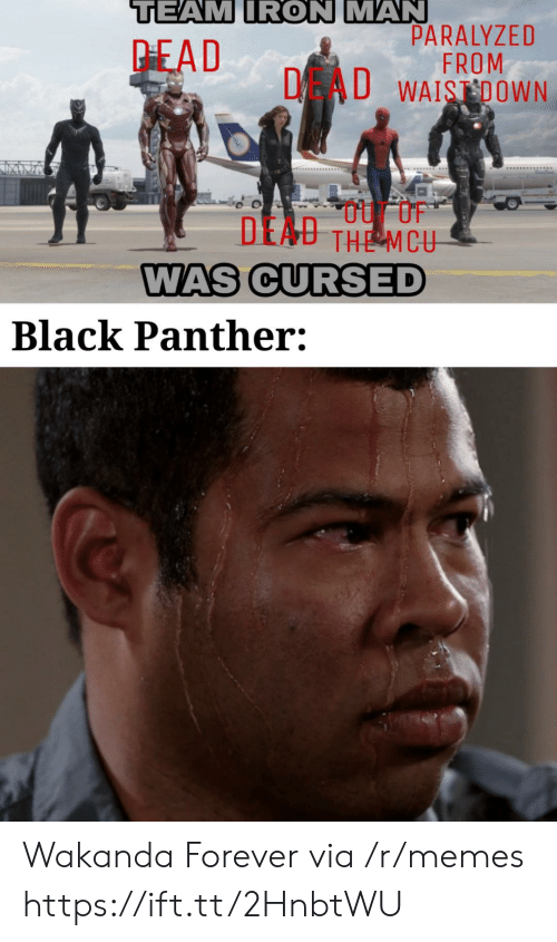 Wakanda: TEAM IRON MAN  PARALYZED  FROM  DAU WAISDOWN  PEAD  DEAU THE MCU  WAS CURSED  Black Panther: Wakanda Forever via /r/memes https://ift.tt/2HnbtWU