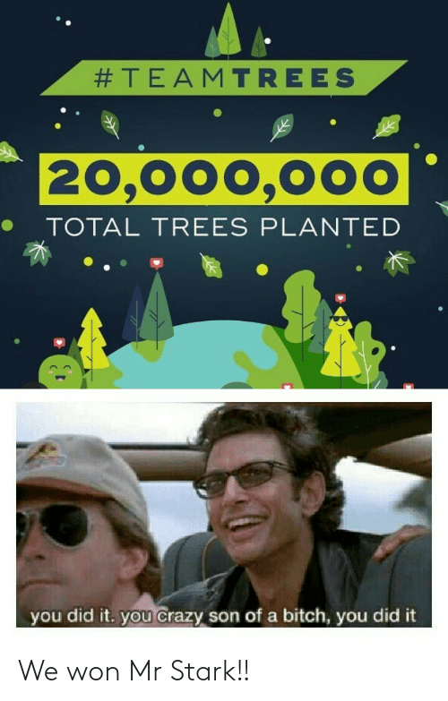 you did it:  #TEAMTREES  20,000,000  TOTAL TREES PLANTED  you did it. you crazy son of a bitch, you did it We won Mr Stark!!