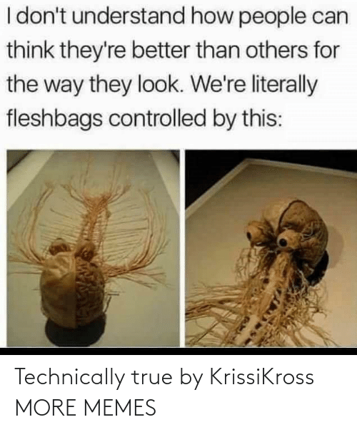 Today: Technically true by KrissiKross MORE MEMES