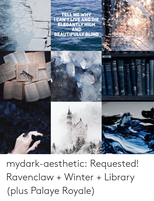 ravenclaw: TELL ME WHY  CANT LIVE AND DIEe  ELEGANTLY HIGH  AND  BEAUTIFULLY BLIND mydark-aesthetic:  Requested! Ravenclaw + Winter + Library (plus Palaye Royale)