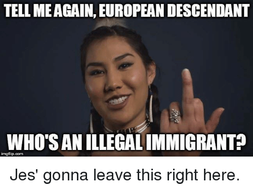 Img Flip: TELL MEAGAIN. EUROPEANDESCENDANT  WHOSANILLEGALIMMIGRANT?  img flip com Jes' gonna leave this right here.
