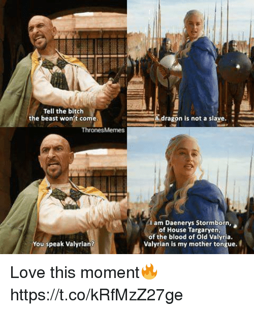 house targaryen: Tell the bitch  the beast won't come  Thrones Memes  You speak Valyrian?  A dragon is not a slave.  I am Daenerys Stormborn,  of House Targaryen,  of the blood of old Valyria.  Valyrian is my mother tongue. Love this moment🔥 https://t.co/kRfMzZ27ge