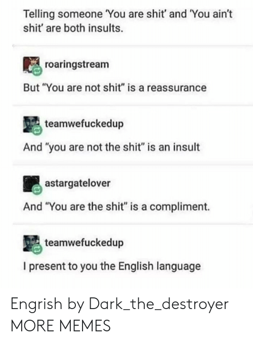 """Engrish: Telling someone You are shit' and You ain't  shit' are both insults.  roaringstream  But """"You are not shit"""" is a reassurance  teamwefuckedup  And """"you are not the shit"""" is an insult  astargatelover  And """"You are the shit"""" is a compliment.  teamwefuckedup  I present to you the English language Engrish by Dark_the_destroyer MORE MEMES"""