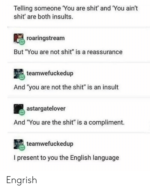 """Engrish: Telling someone You are shit' and You ain't  shit' are both insults.  roaringstream  But """"You are not shit"""" is a reassurance  teamwefuckedup  And """"you are not the shit"""" is an insult  astargatelover  And """"You are the shit"""" is a compliment.  teamwefuckedup  I present to you the English language Engrish"""
