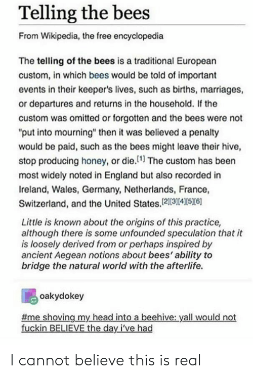 """England, Head, and Wikipedia: Telling the bees  From Wikipedia, the free encyclopedia  The telling of the bees is a traditional European  custom, in which bees would be told of important  events in their keeper's lives, such as births, marriages,  or departures and returns in the household. If the  custom was omitted or forgotten and the bees were not  """"put into mourning"""" then it was believed a penalty  would be paid, such as the bees might leave their hive,  stop producing honey, or die.1 The custom has been  most widely noted in England but also recorded in  Ireland, Wales, Germany, Netherlands, France,  Switzerland, and the United States,121314S6  Little is known about the origins of this practice,  although there is some unfounded speculation that it  is loosely derived from or perhaps inspired by  ancient Aegean notions about bees' ability to  bridge the natural world with the afterlife.  oakydokey  me shoving my head into a beehive: yall would not  fuckin BELIEVE the day I've had I cannot believe this is real"""