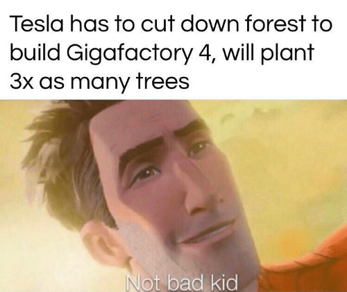 Trees: Tesla has to cut down forest to  build Gigafactory 4, will plant  3x as many trees  Not bad kid