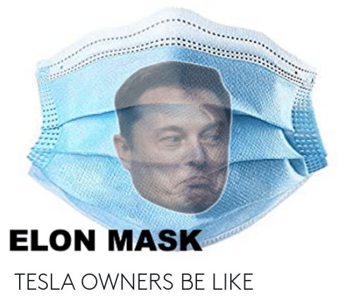 Owners: TESLA OWNERS BE LIKE