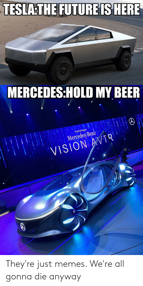 benz: TESLA THE FUTURE IS HERE  MERCEDES:HOLD MY BEER  World Premiere  Mercedes-Benz  VISION AVTR They're just memes. We're all gonna die anyway