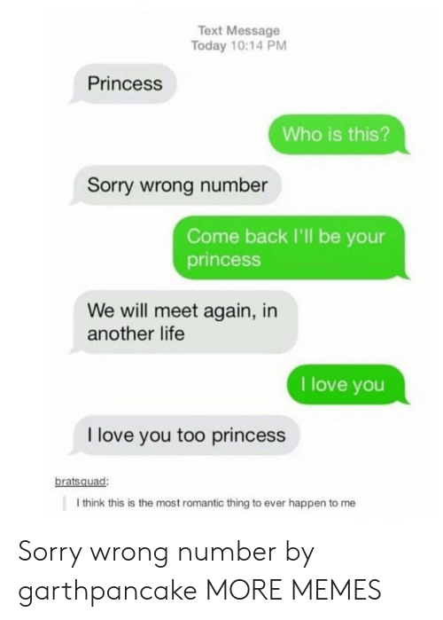 sorry wrong number: Text Message  Today 10:14 PM  Princess  Who is this?  Sorry wrong number  Come back I'll be your  princesS  We will meet again, in  another life  I love you  I love you too princess  bratsquad:  I think this is the most romantic thing to ever happen to me Sorry wrong number by garthpancake MORE MEMES