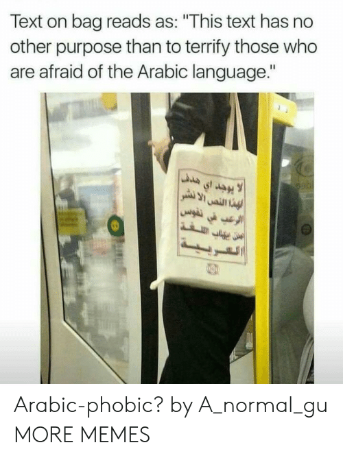 "No Other: Text on bag reads as: ""This text has no  other purpose than to terrify those who  are afraid of the Arabic language."" Arabic-phobic? by A_normal_gu MORE MEMES"