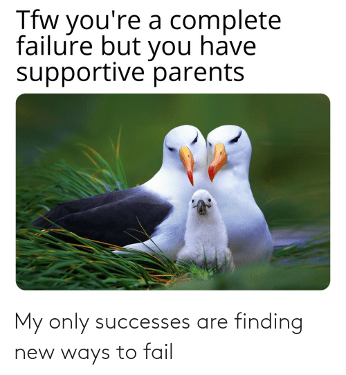 Finding: Tfw you're a complete  failure but you have  supportive parents My only successes are finding new ways to fail