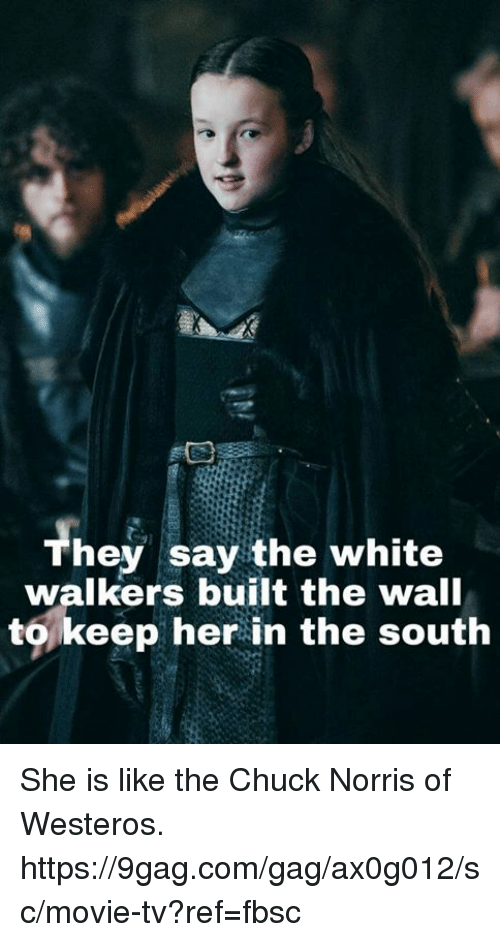 chucking: Th  hey say the white  walkers built the wall  to,keep her in the south She is like the Chuck Norris of Westeros. https://9gag.com/gag/ax0g012/sc/movie-tv?ref=fbsc