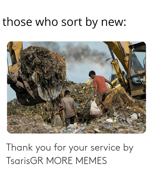 thank you for your: Thank you for your service by TsarisGR MORE MEMES