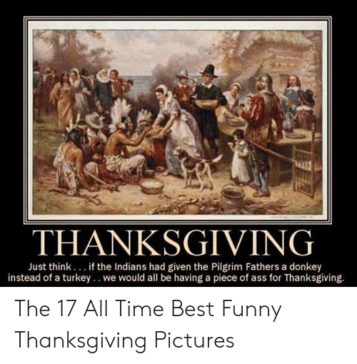 Ass, Donkey, and Funny: THANKSGIVING  Just think. if the Indians had given the Pilgrim Fathers a donkey  instead of a turkey.. we would all be having a piece of ass for Thanksgiving. The 17 All Time Best Funny Thanksgiving Pictures