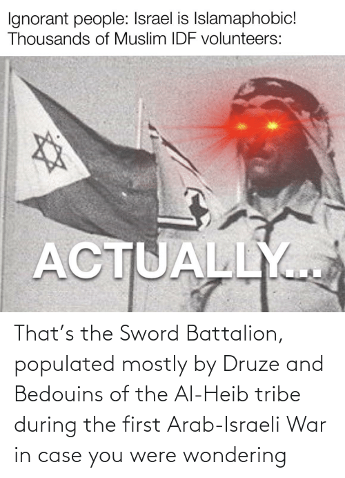 the sword: That's the Sword Battalion, populated mostly by Druze and Bedouins of the Al-Heib tribe during the first Arab-Israeli War in case you were wondering