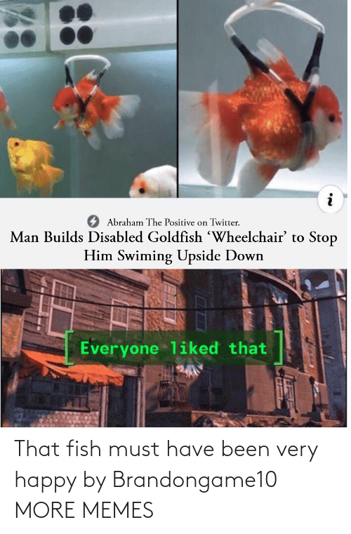Must: That fish must have been very happy by Brandongame10 MORE MEMES