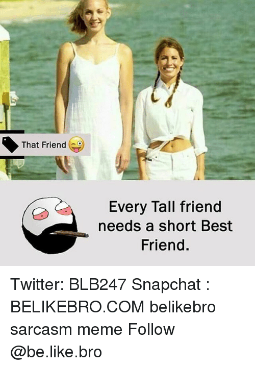 Tall Friend: That Friend  Every Tall friend  needs a short Best  Friend. Twitter: BLB247 Snapchat : BELIKEBRO.COM belikebro sarcasm meme Follow @be.like.bro