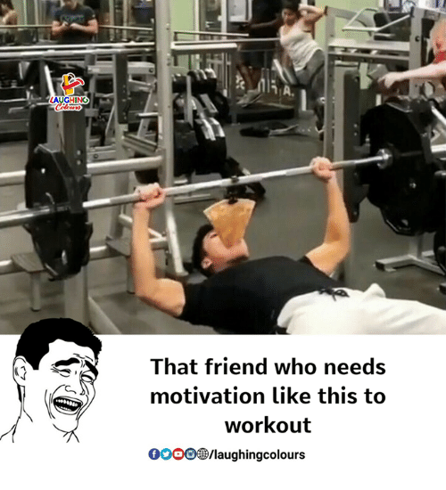 Gooo, Indianpeoplefacebook, and Who: That friend who needs  motivation like this to  workout  GOOO/laughingcolours