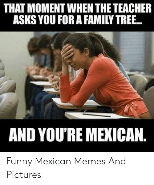 funny mexican memes: THAT MOMENT WHEN THE TEACHER  ASKS YOU FOR A FAMILY TREE..  AND YOU'RE MEXICAN. Funny Mexican Memes And Pictures