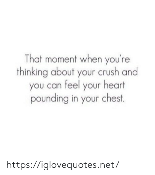 Crush, Heart, and Net: That moment when you're  thinking about your crush and  you can feel your heart  pounding in your chest https://iglovequotes.net/