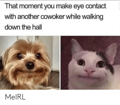 MeIRL, Another, and Eye: That moment you make eye contact  with another cowoker while walking  down the hall MeIRL