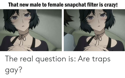 Anime, Crazy, and Snapchat: That new male to female snapchat filter is crazy! The real question is: Are traps gay?