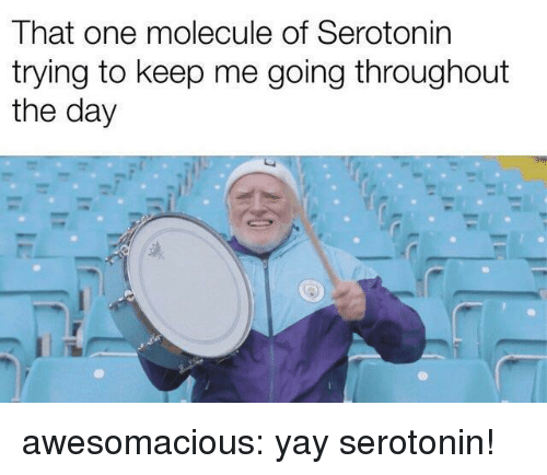 Tumblr, Blog, and Http: That one molecule of Serotonin  trying to keep me going throughout  the day awesomacious:  yay serotonin!
