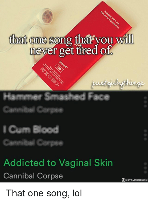 Vagin: that one song  that you will  never get tired Ol  Hammer Smashed Face  Cannibal Carps  I Cum Blood  Addicted to Vaginal Skin  Cannibal Corpse  METAL MEME COM That one song, lol
