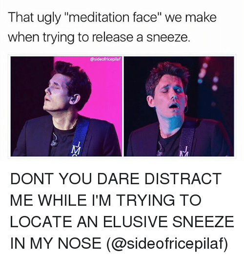 "Distracte: That ugly ""meditation face"" we make  when trying to release a sneeze.  @sideofricepilaf DONT YOU DARE DISTRACT ME WHILE I'M TRYING TO LOCATE AN ELUSIVE SNEEZE IN MY NOSE (@sideofricepilaf)"