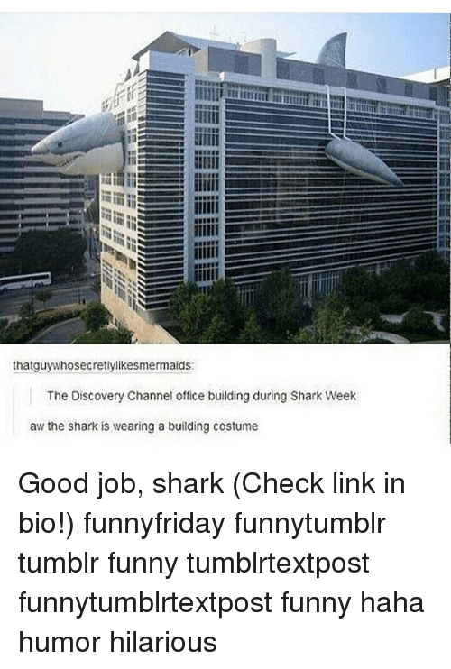 discovery channel: thatguy whosecretlylikesmermaids:  The Discovery Channel office building during Shark Week  aw the shark is wearing a building costume Good job, shark (Check link in bio!) funnyfriday funnytumblr tumblr funny tumblrtextpost funnytumblrtextpost funny haha humor hilarious