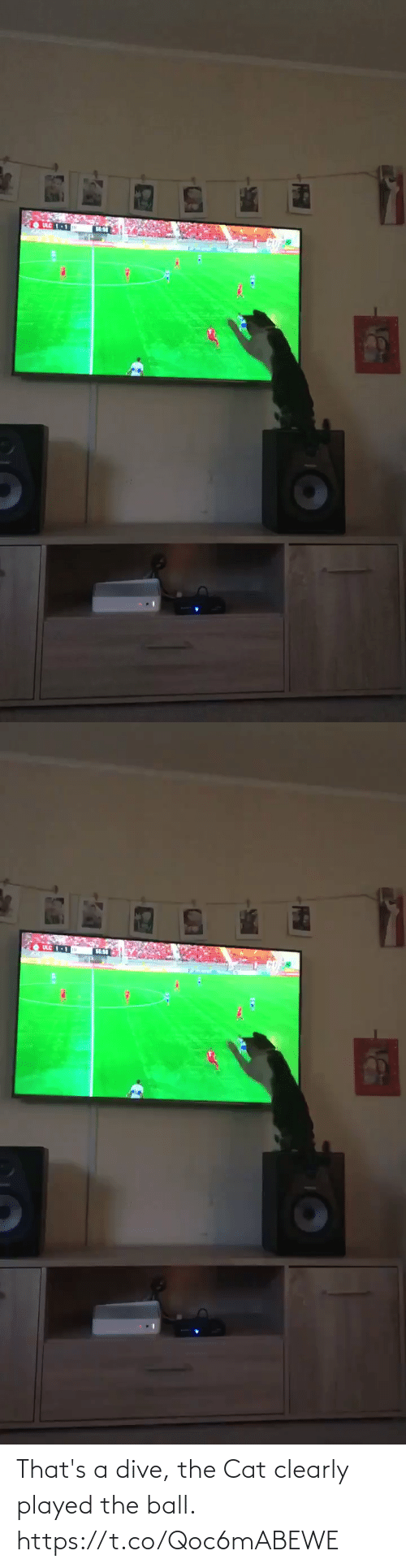 played: That's a dive, the Cat clearly played the ball.  https://t.co/Qoc6mABEWE