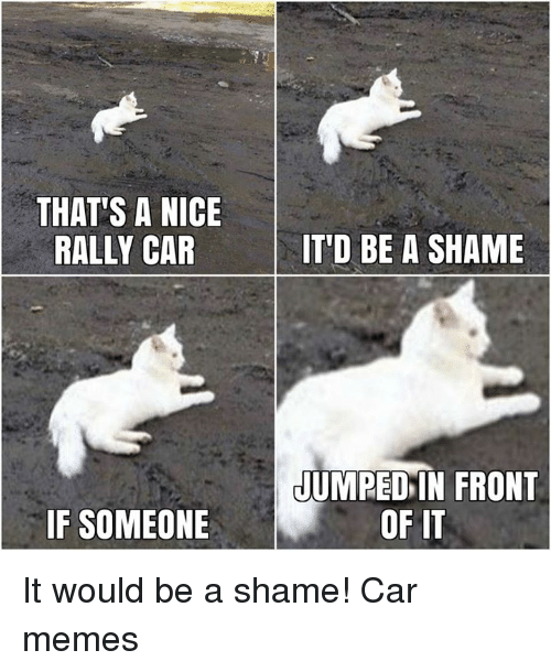 Cars, Shame, and Rally: THAT'S A NICE  RALLY CAR  IT'D BE A SHAME  JUMPED IN FRONT  IF SOMEONE  OF IT It would be a shame! Car memes