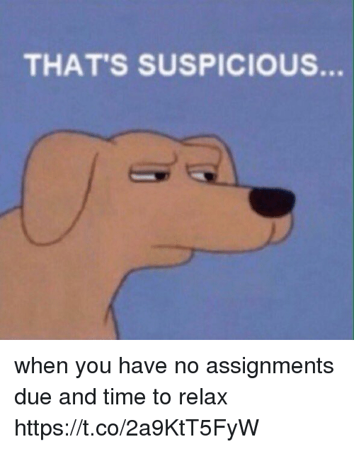 Thats Suspicious: THAT'S SUSPICIOUS. when you have no assignments due and time to relax https://t.co/2a9KtT5FyW