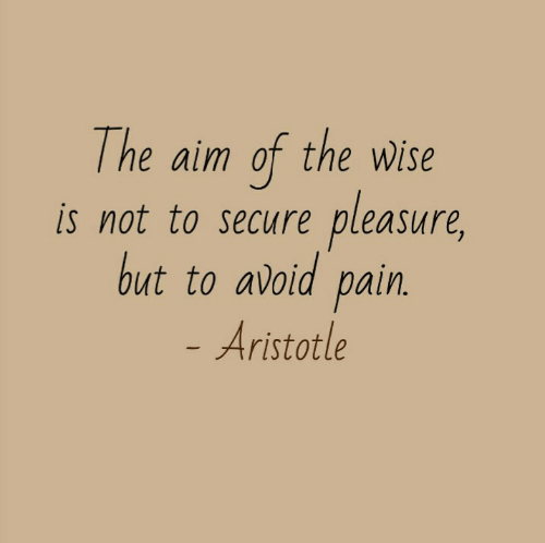 pleasure: The aim of the wWise  pleasure,  is not to secure  but to avoid pain.  - Aristotle