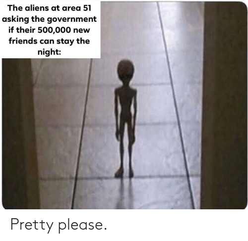 Friends, Aliens, and Government: The aliens at area 51  asking the government  if their 500,000 new  friends can stay the  night: Pretty please.