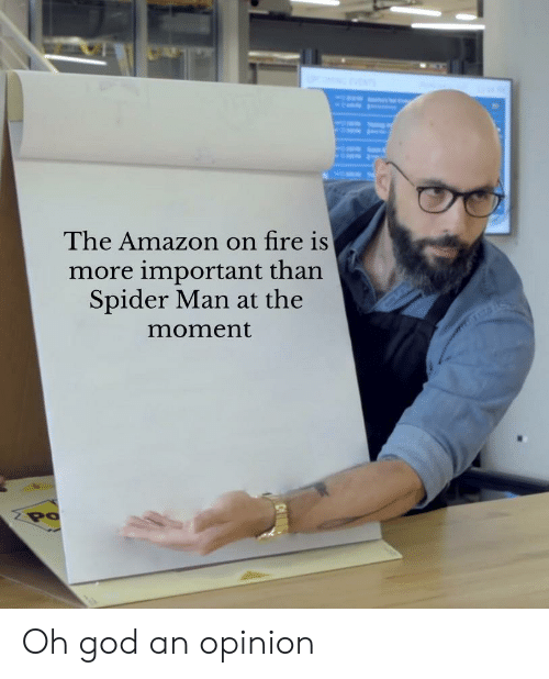 Amazon, Fire, and God: The Amazon on fire is  more important than  Spider Man at the  moment  Po Oh god an opinion