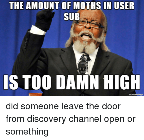 discovery channel: THE AMOUNT OF MOTHS IN USER  SUB  IS TOO DAMN HIGH  made on imgur did someone leave the door from discovery channel open or something