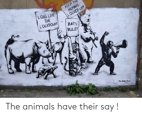 their: The animals have their say !