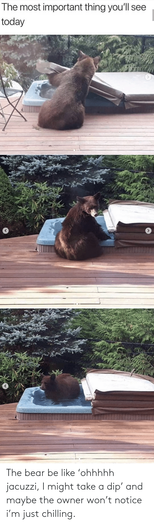 maybe: The bear be like 'ohhhhh jacuzzi, I might take a dip' and maybe the owner won't notice i'm just chilling.